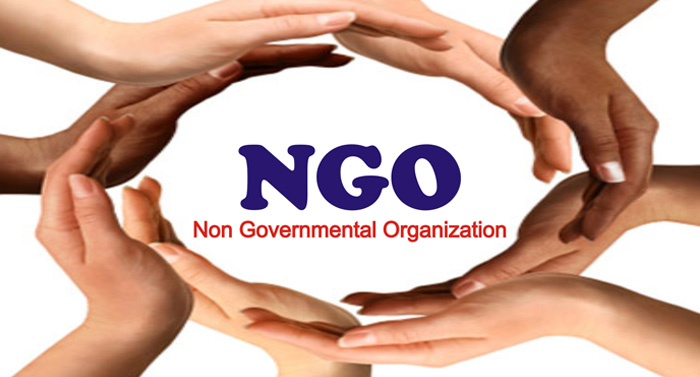 Consulting programs for NGOs
